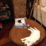 Mimi on Nancy's coffee table
